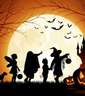 Non avete ancora programmi per la sera di Halloween  Goa Magazine vi  propone una guida per vivere la notte più spaventosa dell anno a 360 gradi 4a599eb19899