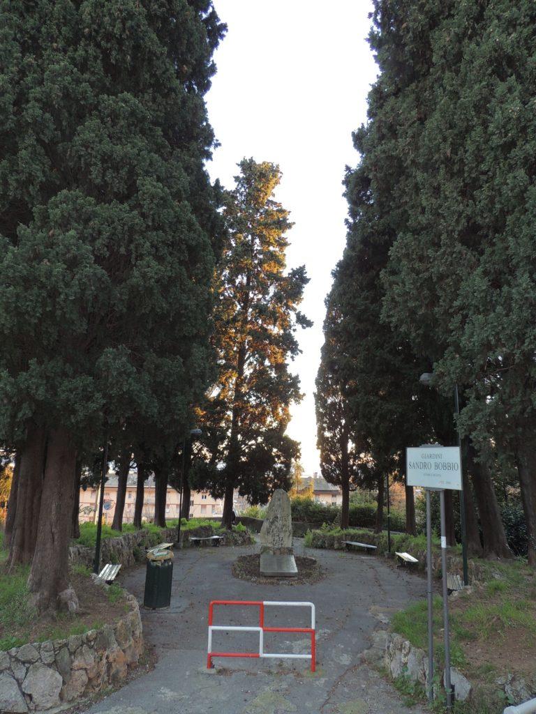 Alcuni alberi della Rimembranza sono stati piantati anche a Sestri Ponente